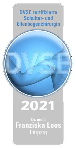 DVSE Logo